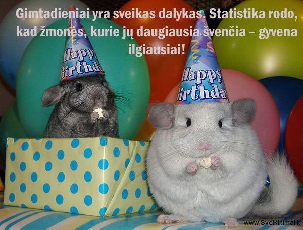 Juokingi gimtadienio sveikinimai geriausiai draugei