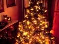 Kalėdiniai atvirukai 14