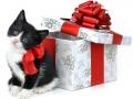 Kalėdiniai atvirukai 67