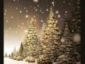Kalėdiniai atvirukai 70