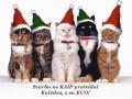 Kalėdiniai atvirukai 75