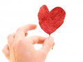 Valentino dienos atvirukai 46